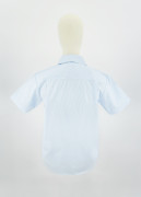 Shirt  2-3